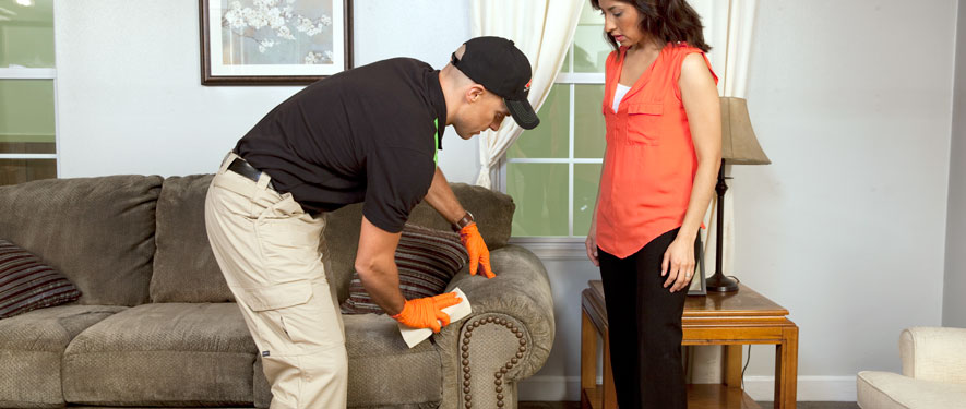 Troy, AL carpet upholstery cleaning