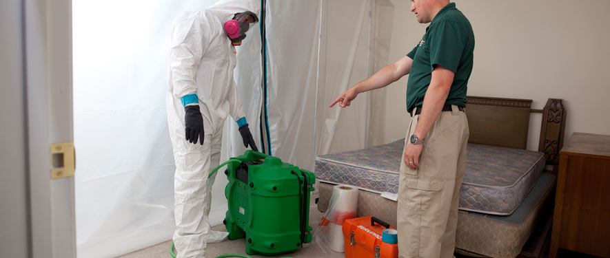 Troy, AL mold removal process